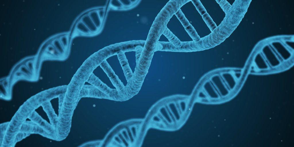 3 Biotechs suivies par Capitelia , société de gestion